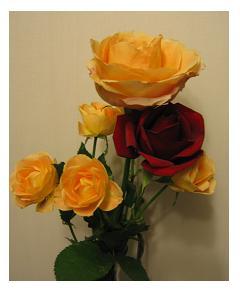 かわいい薔薇^^
