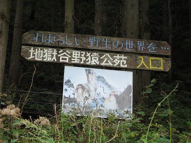 野猿公園入り口